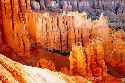 Hoodoos all'alba, Bryce National Park, USA