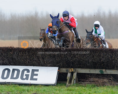 ALDERGALE (Tom Strawson) - Midlands Area Club Point-to-point 2017, Thorpe Lodge 29/1