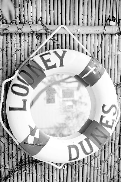LOONEY DUNES FIRE ISLAND / LONG ISLAND NEW YORK BLACK AND WHITE