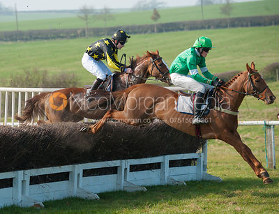 Always Roses (George Henderson) - Belvoir Hunt Point to Point 24/3/12
