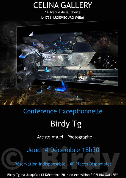 Birdy Tg Exhibition in LUXEMBOURG at Celina Gallery