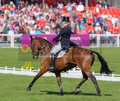 Kristina Cook and DE NOVO NEWS - Dressage - Mitsubishi Motors Badminton Horse Trials 2013.