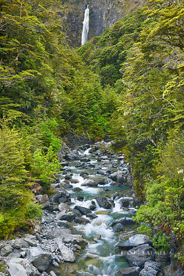 Waterfall in temperate rainforest - Oceania, New Zealand, South Island, Canterbury, Selwyn, Arthur's Pass Nationalpark, Devil...