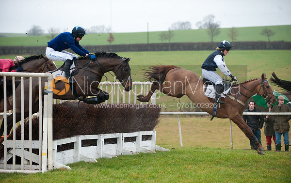 Race 2 - Cottesmore Hunt Point to Point, Garthorpe 4/3/12