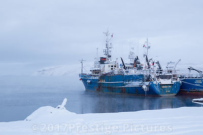 Russian Trawlers moored in Kirkenes - Northern Norway Royalty free stock photo library