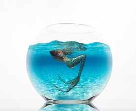 Composite of a glass fishbowl with a picture of a mermaid surfacing