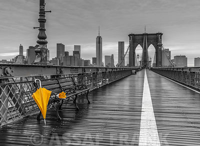 Yellow umbrella and bunch of roses, Brooklyn bridge, New York