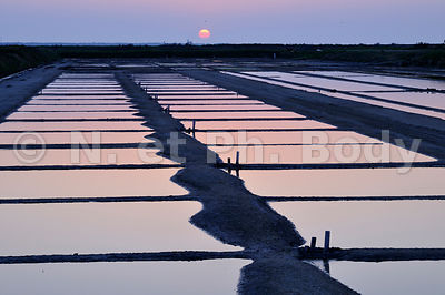 MARAIS SALANT, ILE DE RE, CHARENTE-MARITIME, FRANCE//SALT MARSH, ILE DE RE, CHARENTE-MARITIME, FRANCE