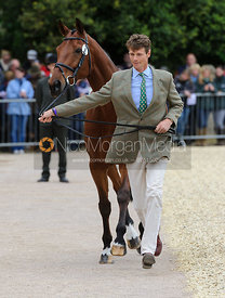 Williiam Fox-Pitt and COOL MOUNTAIN - First Horse Inspection, Mitsubishi Motors Badminton Horse Trials 2014