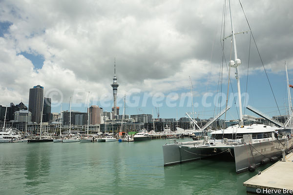 Auckland's harbor