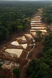 Aerial view of Alluvial Gold Mine in the rainforest, Guyana , December 2009