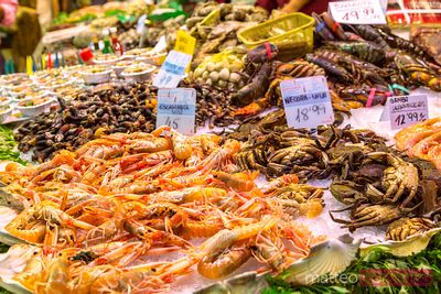 Fresh seafood on sale at La Boqueria market, Barcelona, Spain