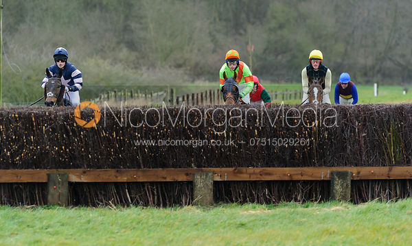 The Woodland Pytchley  Point-to-point at Dingley 26/3