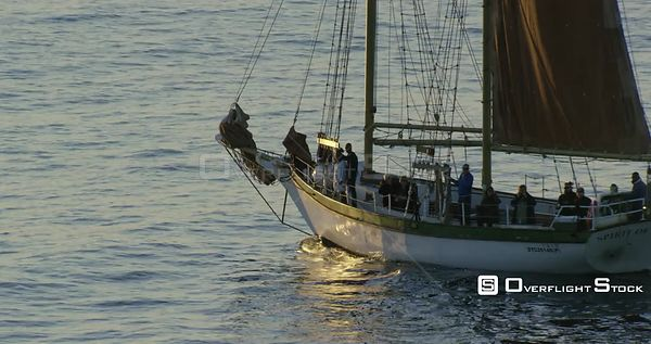 Tracking shot of people on a sail boat. Western Cape South Africa