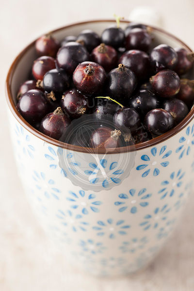 Blackcurrants in Pot