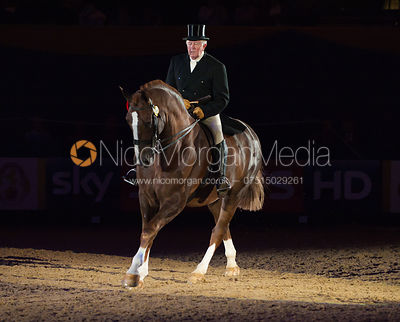 HOYS Heavyweight Hunter photos