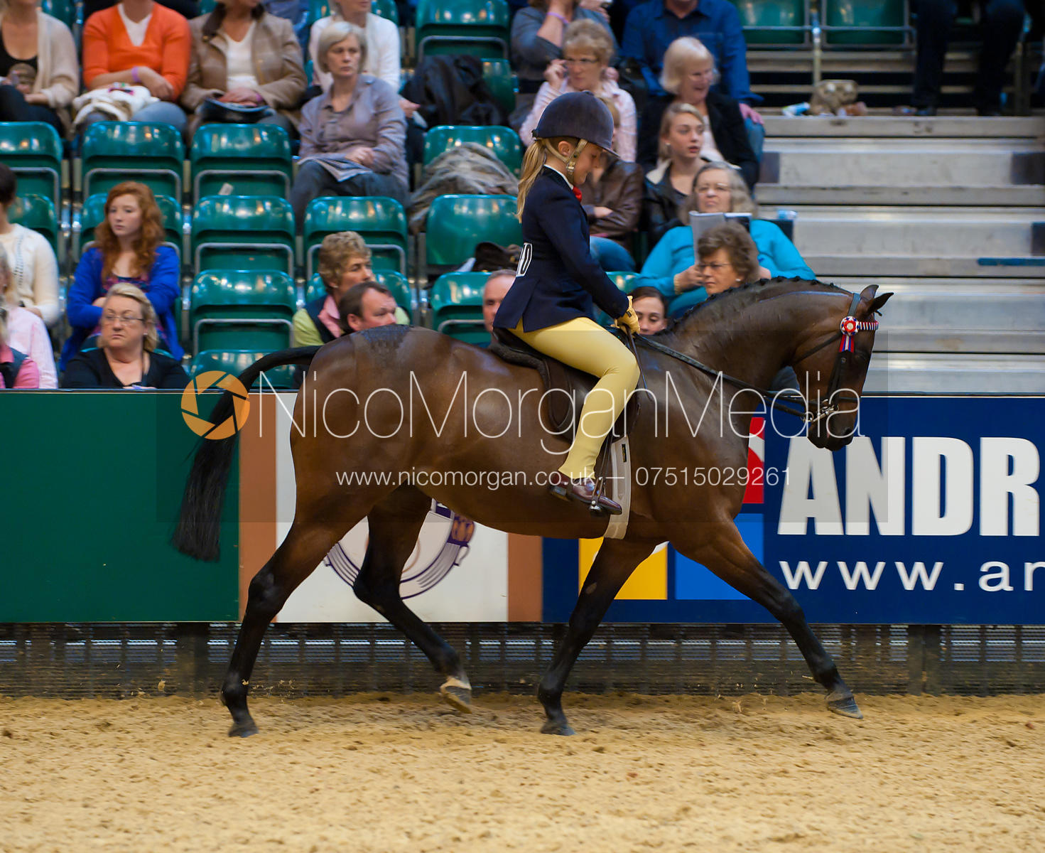 Charlotte Morgan Riding Pony of the Year, Horse of the Year Show 2010