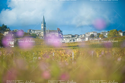 Vignoble de Saint-Emilion