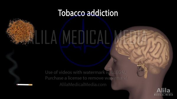 Tobacco addiction NARRATED animation