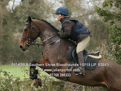 2015-01-11 KSB & Southern Shires Bloodhounds