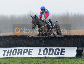 Race 8 - Maiden - Midlands Area Club Point-to-point 2017, Thorpe Lodge 29/1