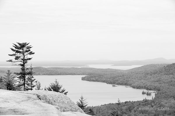 VIEW FROM BUBBLE ROCK AREA ACADIA NATIONAL PARK MAINE BLACK AND WHITE