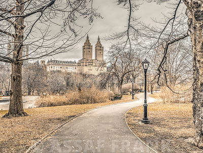 Pathway through Central park, New York