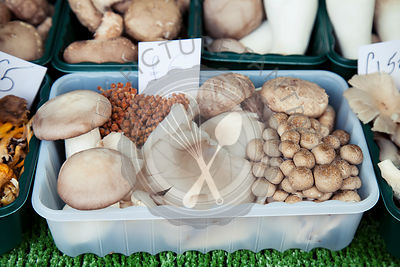 Mixed mushrooms on market stall