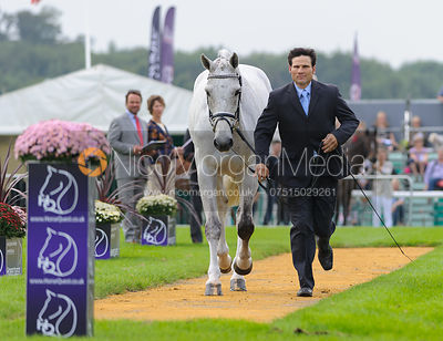 Shane Rose and CP QUALIFIED - The first vets inspection (trot up),  Land Rover Burghley Horse Trials, 3rd September 2014.