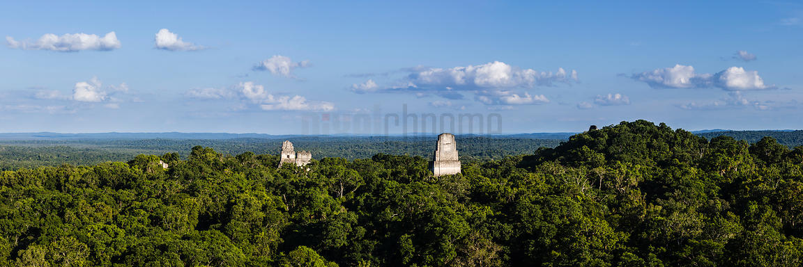 Elevated Views of Temples at Tikal from Temple IV