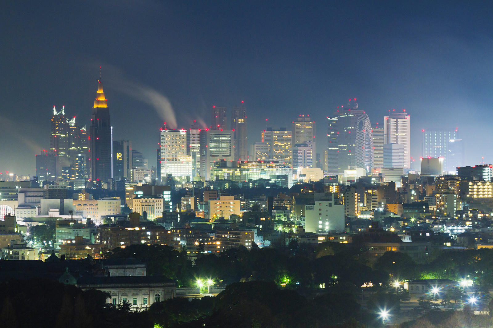 Shinjuku Skyline at night