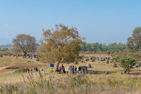 PHONSOVAN, LAOS - JANUARY 29, 2019: A tour group visiting the Plain of Jars, Thong Hai Hin Site 1, near the town of Phonsavan...