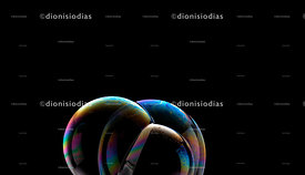 Three shiny and multicolored soap bubbles on black background