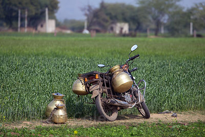 Motorcycle with metal water pots on a wheat farm, Tabeeji village, Rajasthan, India