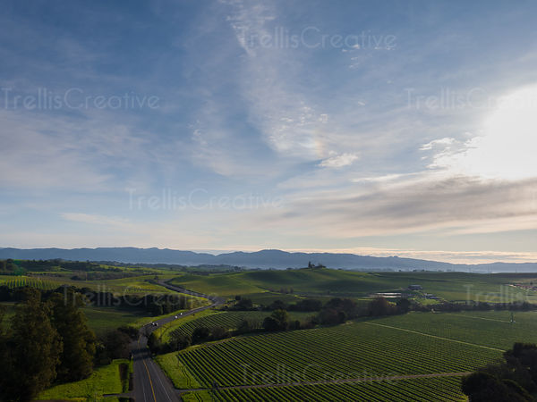 Aerial  of road and vineyard under cloudy blue sky