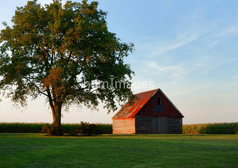 Beautiful red barn in rural Douglas County, Illinois