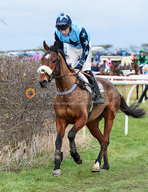 HADMEATHELLO (Dale Peters) - Race 7 - Open Maiden Div 2 - The Midlands Area Club at Thorpe Lodge