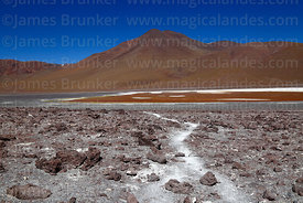 Volcanic scoria rocks on shore of Laguna Colorada and Cerro Negro, Eduardo Avaroa Andean Fauna National Reserve, Bolivia