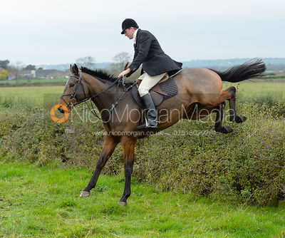 Tom Abel Smith jumping a hedge at Sheepwash