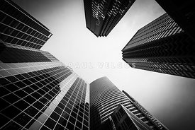 Chicago Buildings in Black and White