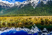 SDP-071012-new_zealand-333-HR