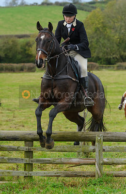 Adrienne Coombe jumping a hunt jump - The Cottesmore Hunt at Somerby, 2-11-13