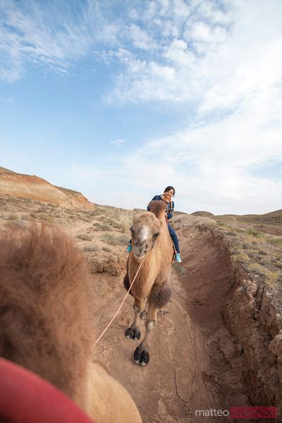 Young woman riding a camel, Gansu, China