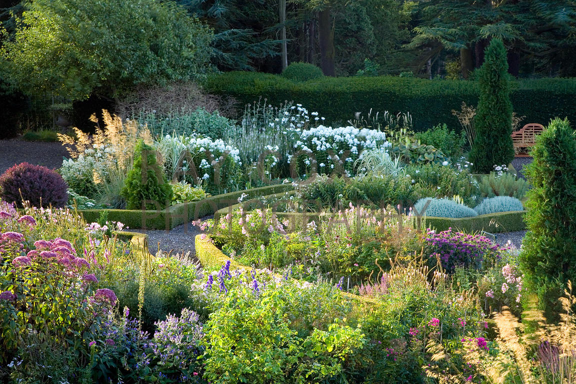 Ruth's Garden in early morning sun
