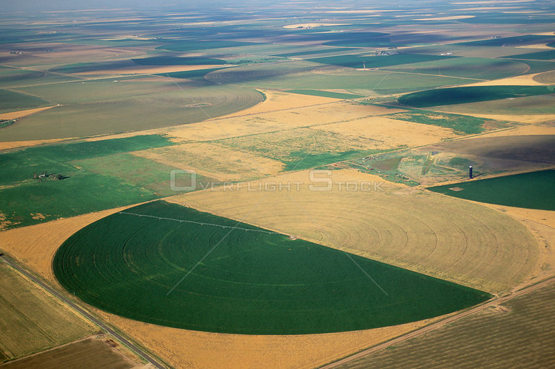 View of crops in an irrigation circle, Panhandle, Texas, USA.