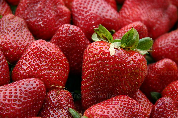 Luscious sweet strawberries at a farmers market