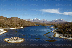 Lake Chungará and Guallatiri volcano (R) in background, Lauca National Park, Region XV, Chile
