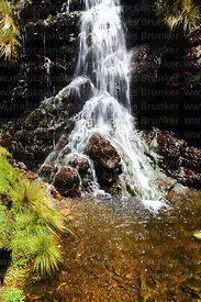 Waterfall near Abra Calderillas pass, Cordillera de Sama Biological Reserve, Bolivia
