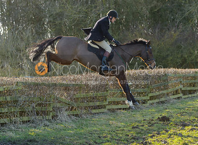 Charlie Smith jumping a hedge at Town Park Farm - The Cottesmore at Town Park Farm