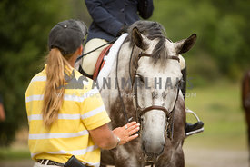 trainer coaching at horse show